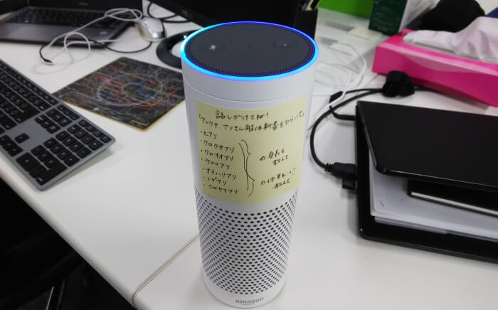 アリさん解体新書テスト用Echo Plus