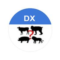 DX動物鳴き声クイズ
